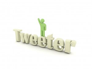 To Tweet or not to Tweet: Verification in an online world